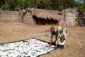 Cassava drying in the sun, lake Niassa, Mozambique