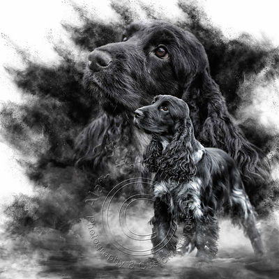 Art-Digital-Alain-Thimmesch-Chien-68