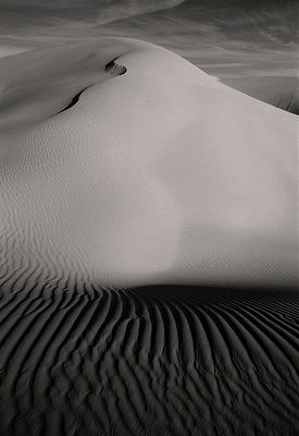 Peters Dunes: Arabian Peninsula  1998: Photographer: Neil Emmerson: £975 including UK VAT.