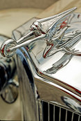Classic Packard Hood Ornament