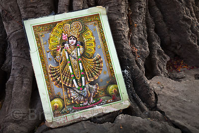 Idol picture against a tree in Jaipur, Rajasthan, India