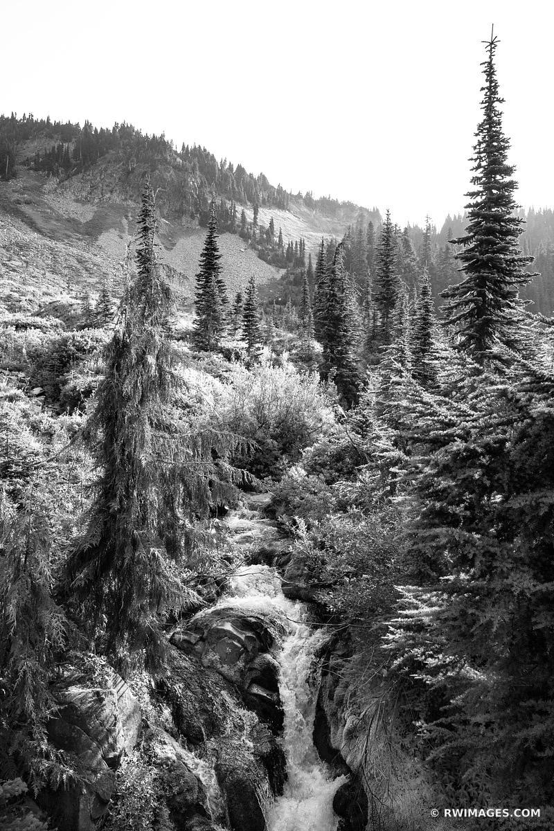 MOUNTAIN STREAM MOUNT RAINIER NATIONAL PARK WASHINGTON STATE BLACK AND WHITE VERTICAL