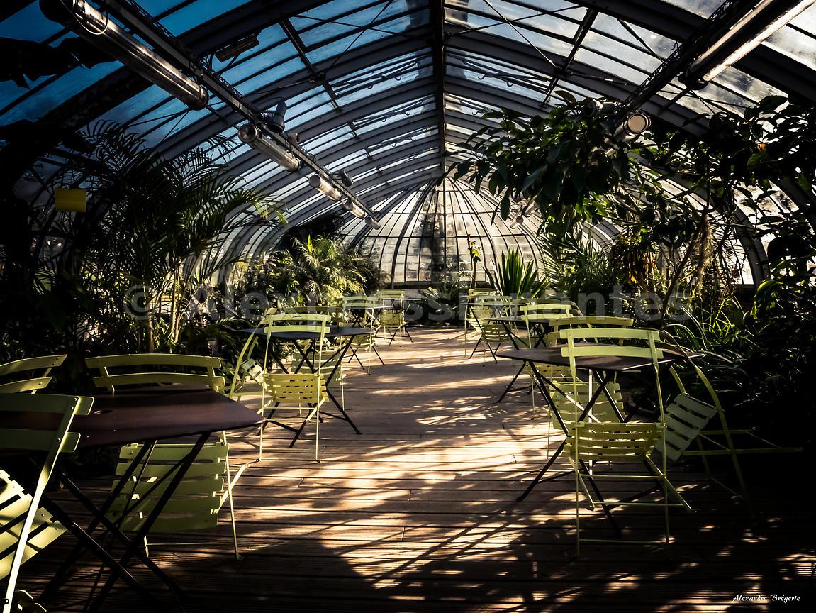 Focus\'Nantes | Serre Jardin des Plantes