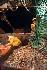 A night's fishing aboard the Alfa trawler