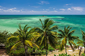 Palms and Sea in Bahia Honda State Park