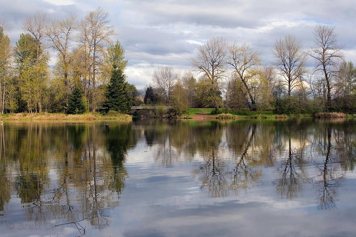 Reflections in a lake in the Willamette Valley near Eugene, Oregon