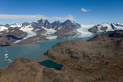 Aerial view of glaciers (from left to right): Lyell Glacier, Geikie Glacier and Neumayer Glacier,  Cumberland West Bay, South...