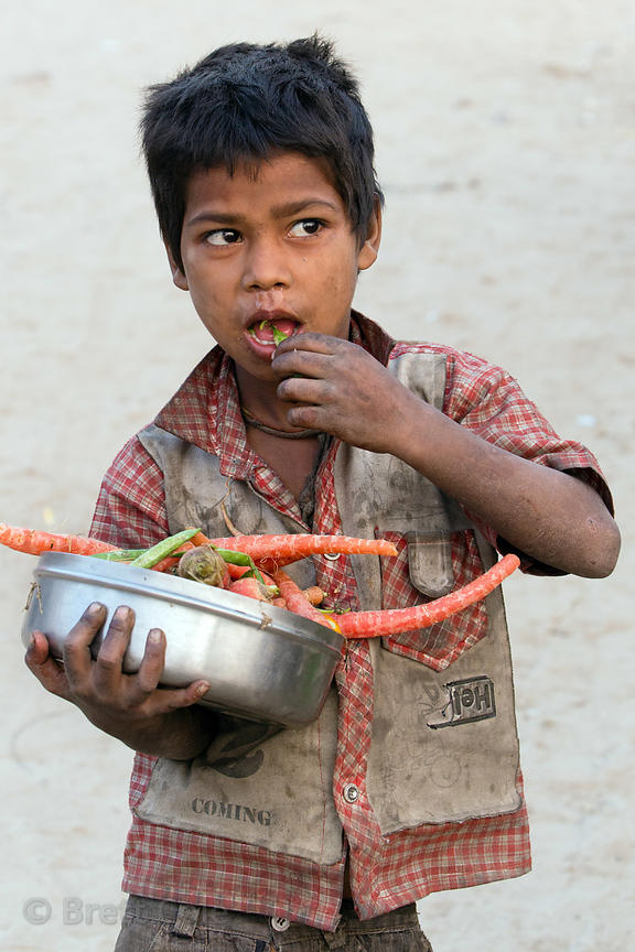 A boy eats carrots and mutter (peas) handed out for free as part of the government food assistance program, Pushkar, Rajastha...