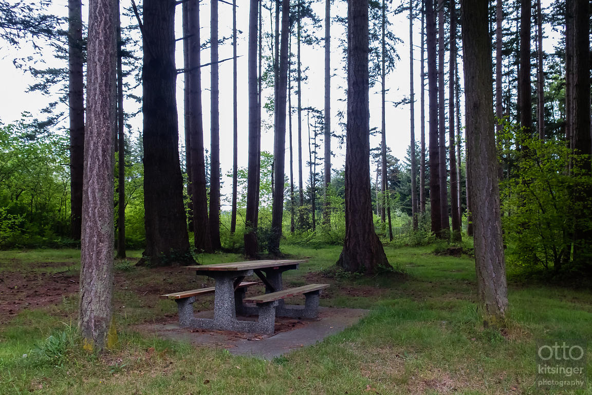 Select Picnic Tables of the Northbound I-5 Custer, Washington Rest Area (1 of 5)
