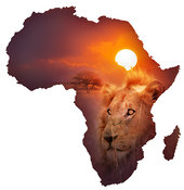 African Wildlife Map