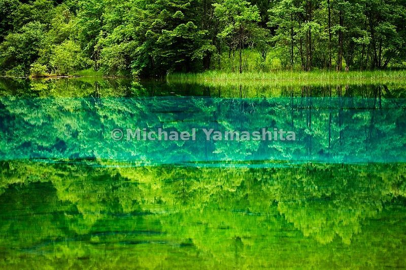 Morning stillness reflects heaven and earth, tinted by mineral deposits and aquatic plant life in Five Flower Lake. The Chine...