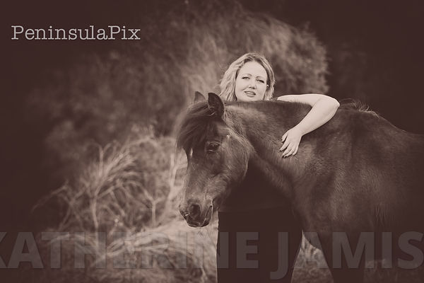 Melissa C - Horses are herd animals, you can't have just 1.. photos