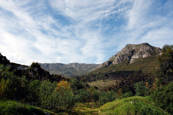 Beautiful countryside near Hout Bay, Cape Town, South Africa