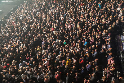 Marillion audience