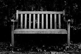 WOODEN BENCH SHAKESPEARE GARDEN EVANSTON ILLINOIS BLACK AND WHITE