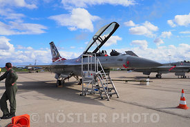 RDAF F-16AM Fighting Falcon