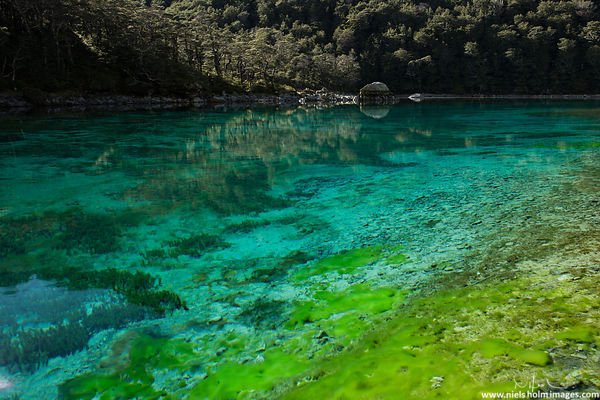 Blue Lake, Nelson National Parc - New Zealand