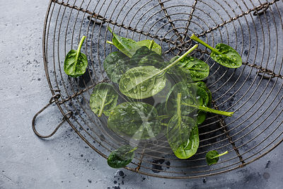 Raw fresh baby spinach on wire rack on gray concrete background close-up