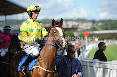3rd Aug 2013 Standard Open National Hunt Flat Race winning horse was Rest And Be