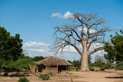 Village at the Elephant Marsh in the Shire Valley, Malawi