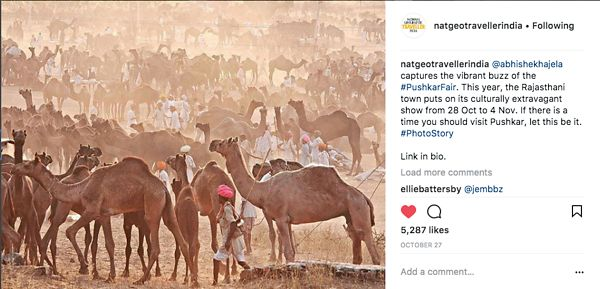 Nat Geo India Instagram Page, Pushkar Story, Oct 27 2017
