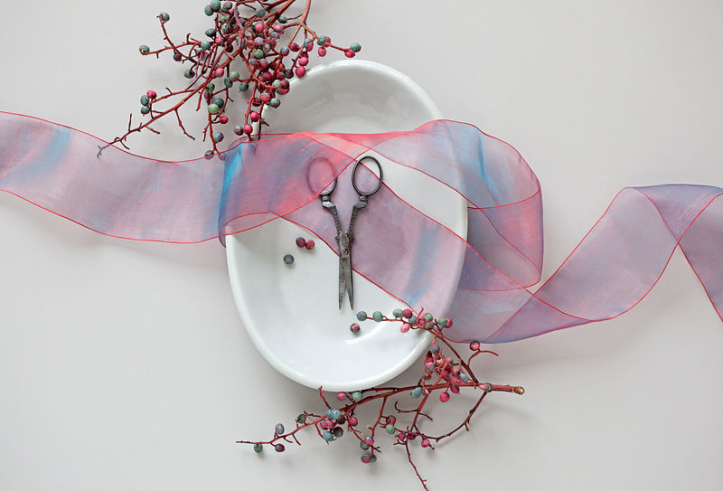 scissor and ribbon in still life with berries
