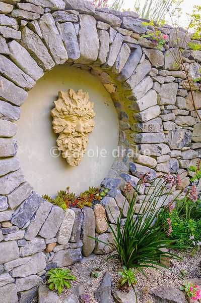 Plaque of a Devonian 'Green Man' framed in a circular niche above a raised alpine bed planted with sempervivums, tulbaghia an...
