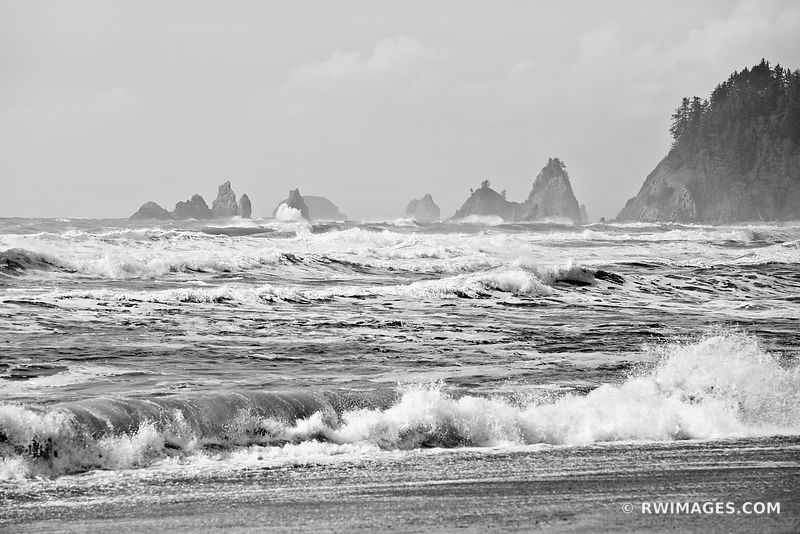 SEA STACK AND PACIFIC OCEAN RIALTO BEACH OLYMPIC NATIONAL PARK BLACK AND WHITE