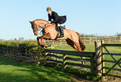 Angus Smales Jumping a hunt jump near the meet. The Cottesmore Hunt at Hill Top Farm 11/12