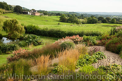 Contemporary Dorset Garden