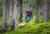 Rainy day in the woods with Maxime Bruneau