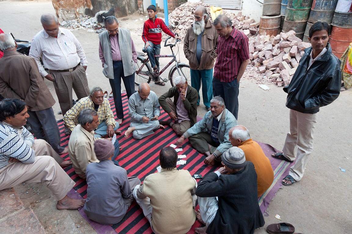 Men playing cards in Jodhpur, Rajasthan, India