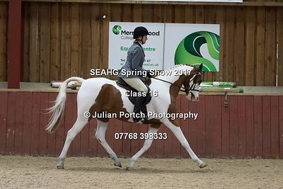 Ridden Classes - South East Arabian Horse Group Spring Show 2017