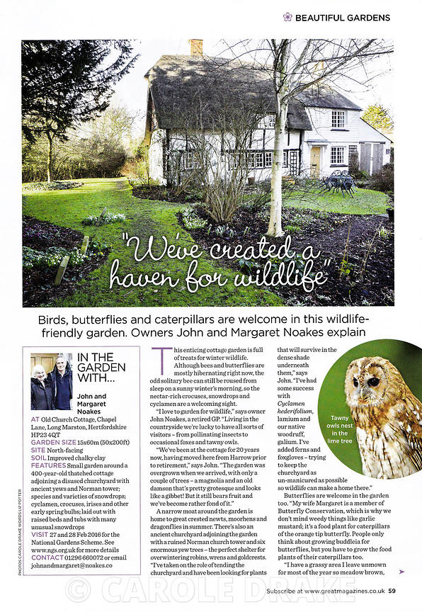 Old Church Cottage, Garden Answers, January 2016