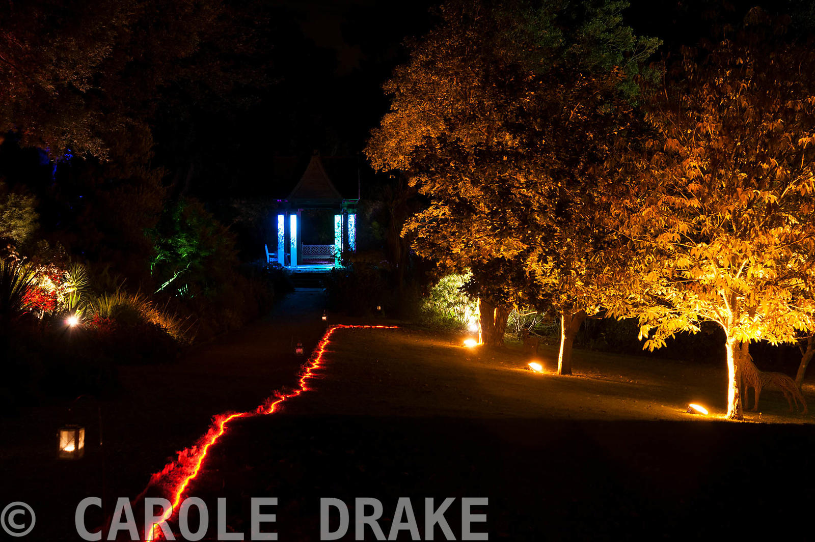 A rope of red light guides visitors through the illuminated garden with the Pavilion beyond