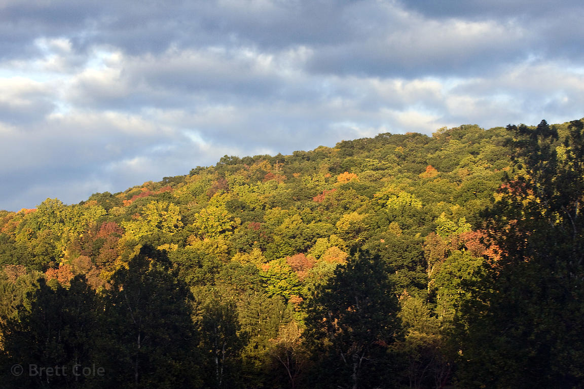 Autumn foliage in the Catskills, New York