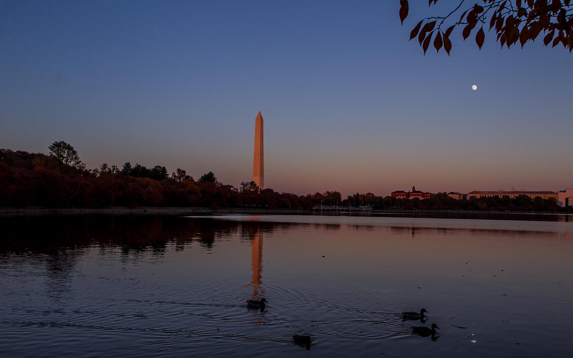 Washington_2011_0315