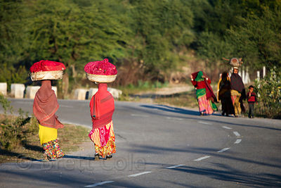 Women carrying baskets on their heads on a road in the rural village of Kharekhari, Rajasthan, India