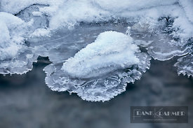 Ice structures at brook - Europe, Germany, Bavaria, Upper Bavaria, Garmisch, Partnachklamm - digital