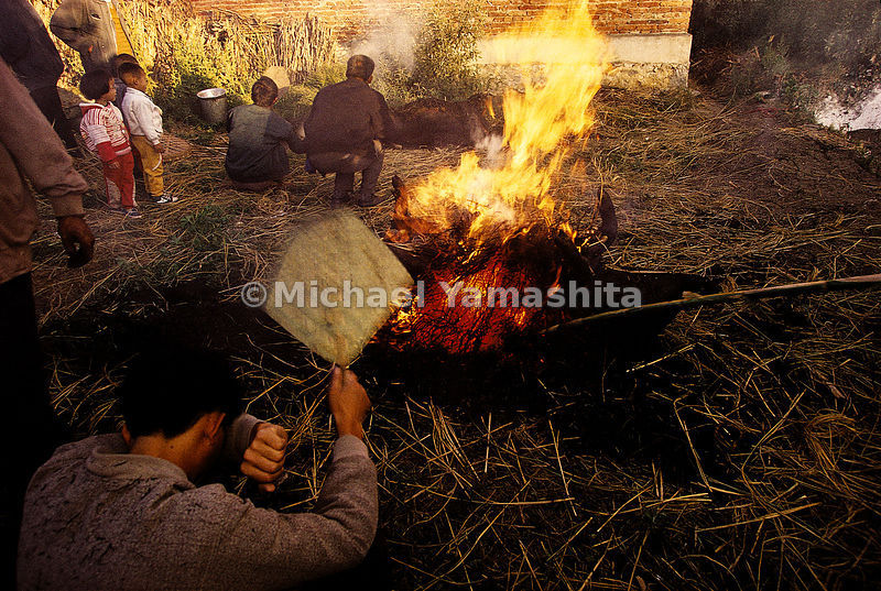 In preparation of a wedding banquet in the village of Shazun, Yunnan, the pig is placed on the fire to burn off the bristles,...