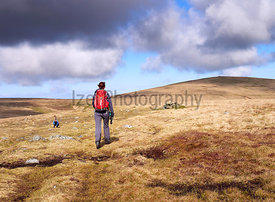 A hiker walking towards Miton Hill and High Pike from the summit of Carrock Fell in the English Lake District, UK.