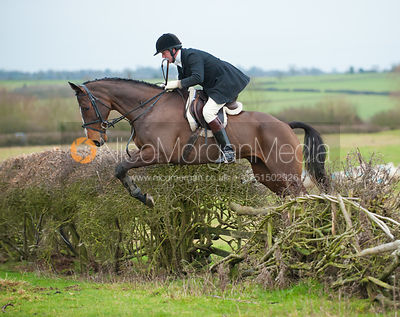 Members of the field jump a hedge near Braunston