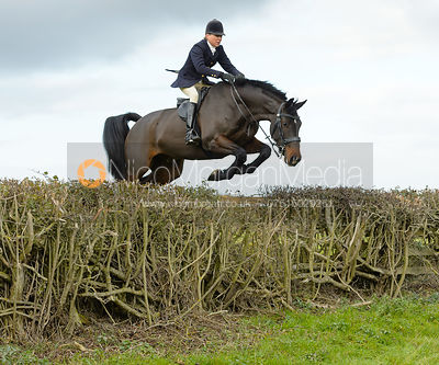 Nicky Hanbury jumping a hedge near Gartree Covert