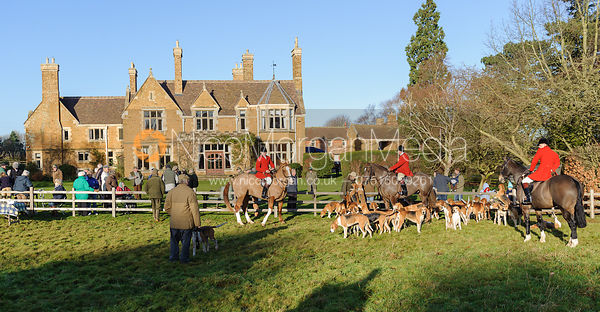 The Belvoir Hunt foxhounds at the  Belvoir Hunt meet at Eaton Grange 2/1