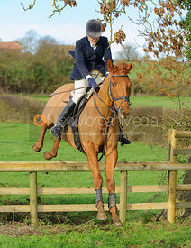 Rebecca Collie jumping a hunt jump
