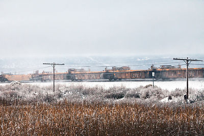 Winter scene along the railroad running next to the Lower Klamath NWR, California. This railroad is what original cut off wat...
