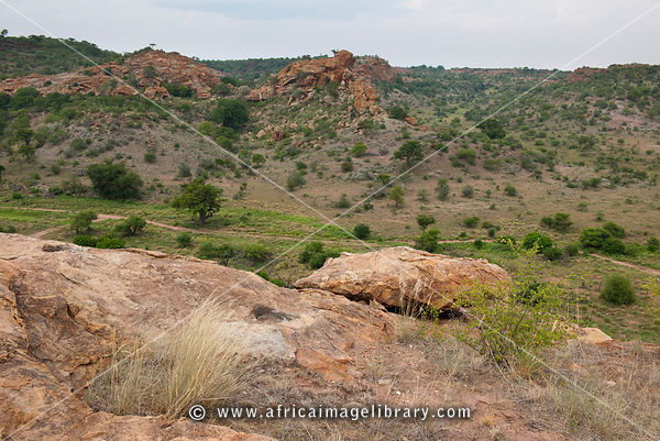 View from Mapungubwe Hill, Mapungubwe National Park, South Africa