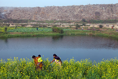 A family picks flowers in Dhapa, Kolkata, India. Behind them is the Dhapa Dumping Ground, the primary landfill for Kolkata's ...