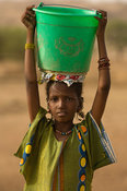 Peul girl fetching water from the senegal river, Senegal