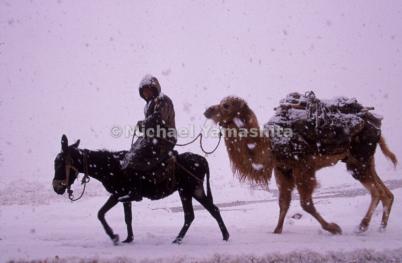 The hardships of a medieval journey would not surprise, nor frighten, the inhabitants of Xinjiang